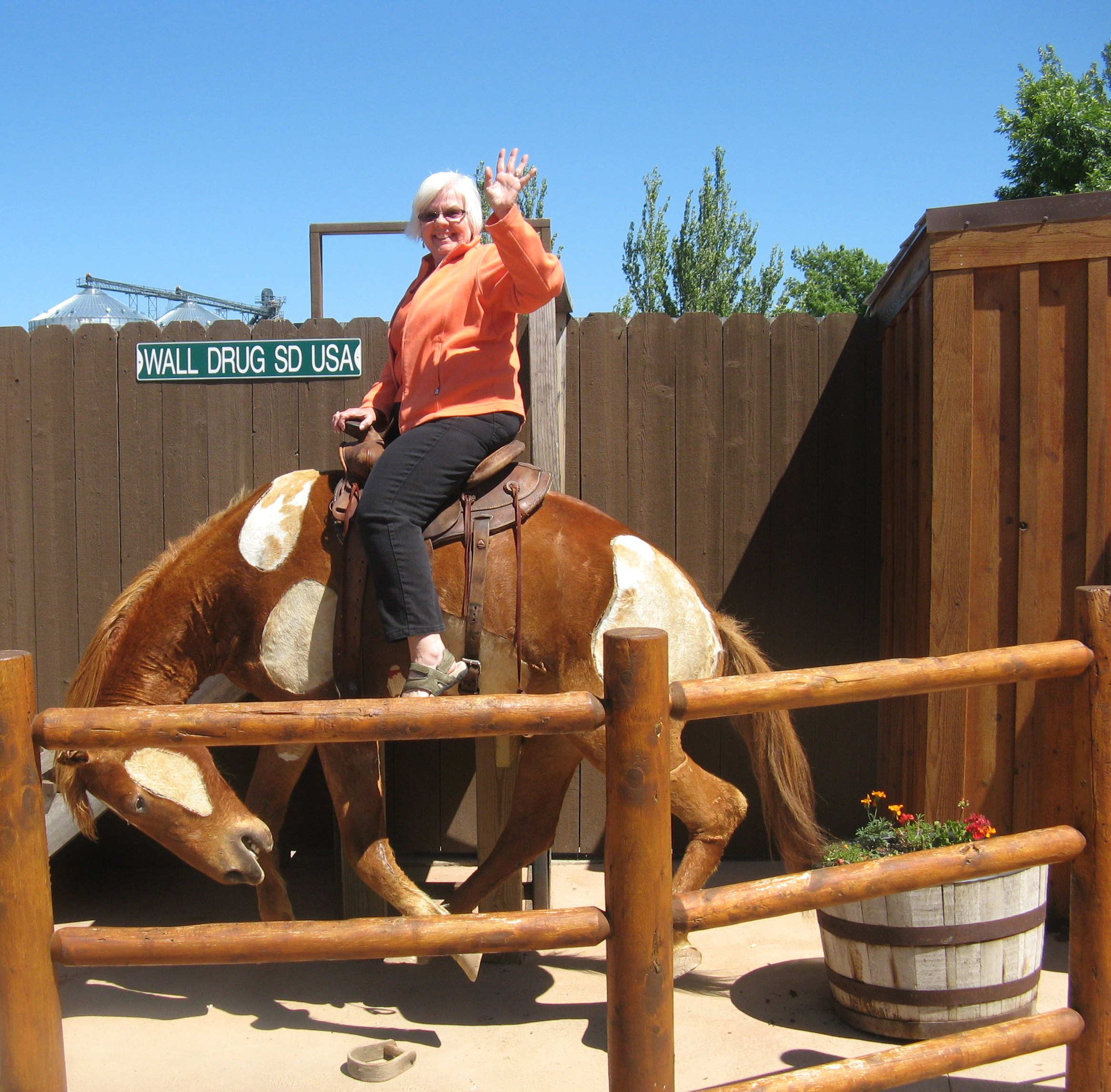 granny+with+horse